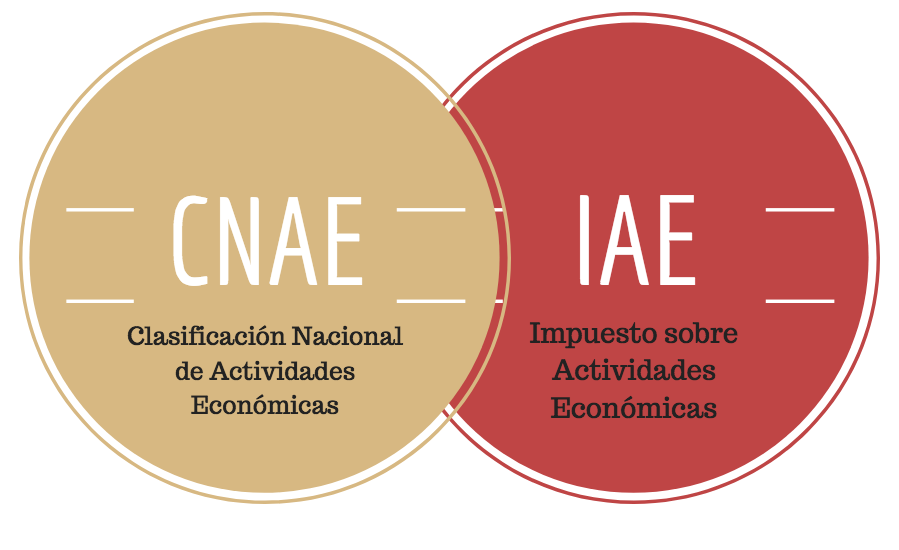 Equivalencia IAE con CNAE